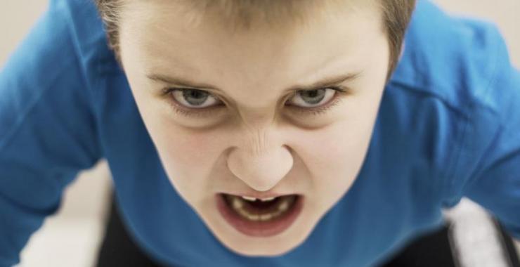 Excelentes recomendaciones para controlar la agresividad de los niños
