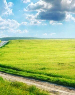 la-ruta-hacia-la-libertad