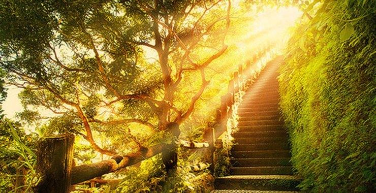 Maximízate, cómo lograr todo tu potencial: el sendero de la luz en otros