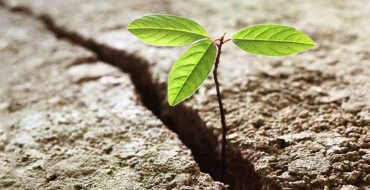 Comenzar de nuevo – Cuando tu vida te pide reinventarte