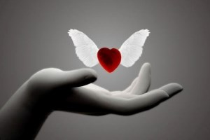 Abriéndote paso hacia tu libertad emocional y espiritual