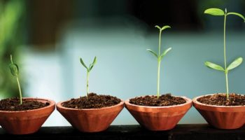 Crecer-Tuestima-Relación de pareja