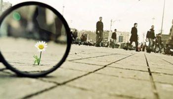 ver la vida