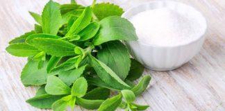 Los beneficios de la Stevia