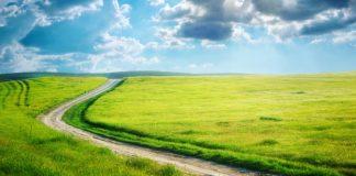 La ruta hacia la libertad