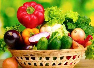 Nutrición holística o integral