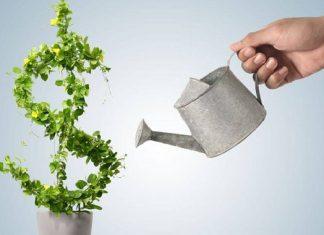 Etapas hacia la madurez financiera