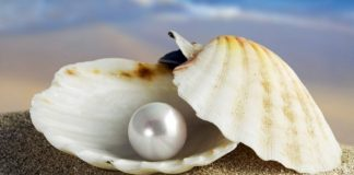Haz de cada herida una perla
