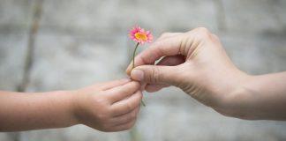 Seis hábitos de la gente altamente agradecida