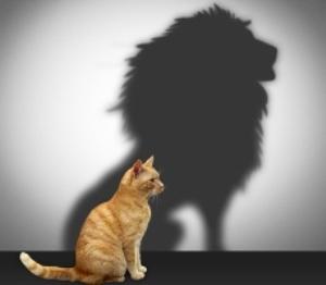 Entiende la autoestima desde tu individualidad