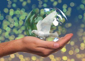 El regalo que te das al perdonar