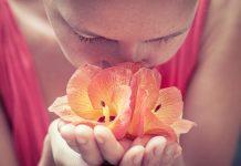 Desarrollar una actitud de gratitud, te empodera